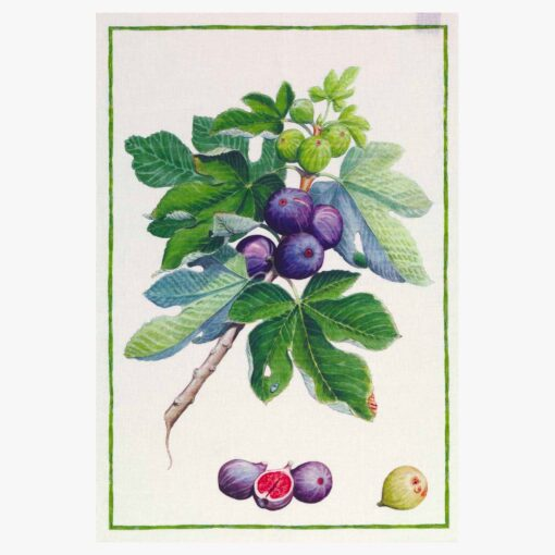 Linen tea towel Figs