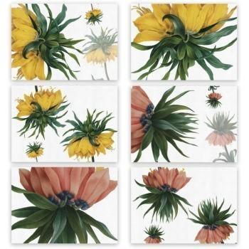 Set di 6 tovagliette e tovaglioli Fritillaria