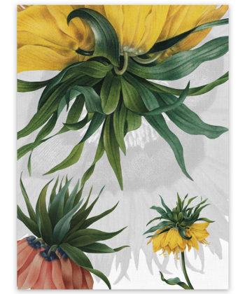 Secador de lino Fritillaria 1