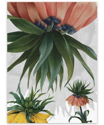 Secador de lino Fritillaria 2
