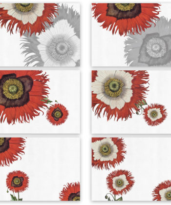"Set of 6 placemats and napkins ""Papaver"""