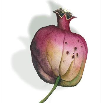 Tea Towel - Pomegranate 4 - La Bottega di Casa