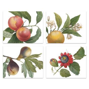 Set di 4 tovagliette e tovaglioli Fruit Love - La Bottega di Casa