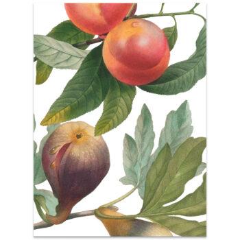Strofinaccio di lino Fruit Love 1