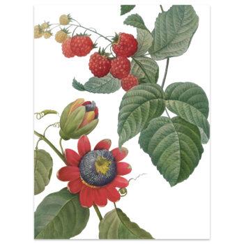 Strofinaccio di lino Fruit Love 2
